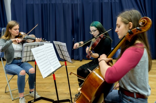 Music Academy (Instrumental) - String Quartet